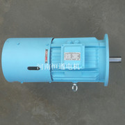 Y132-6E �挎���佃浆���╃�垫��Long-Term Locked-Roto 3- phase torque motor