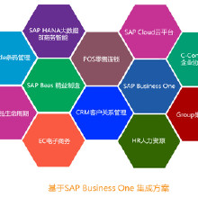 SAP Business One Cloud 云计算平台 SAP Cloud SAP云计算-上海悠远SAP代理